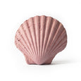 Scallop Shell - Studio Emma