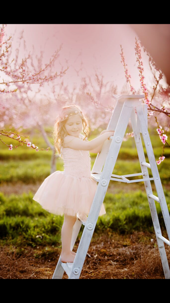 Rose Pink Elegance Rose Blossom Tutu Dress
