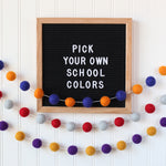 Dorm Room Decor Felt Ball Garland