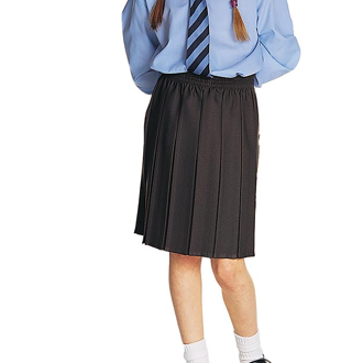 Pleated Skirt Grey - Haven School
