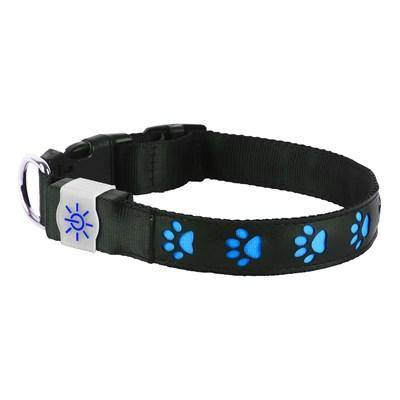 Night Scout - Illuminating USB Rechargeable - Dog Collar