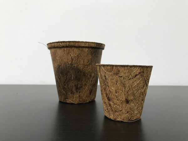 Biodegradable Round Coir Pots (Small, Height 8cm)