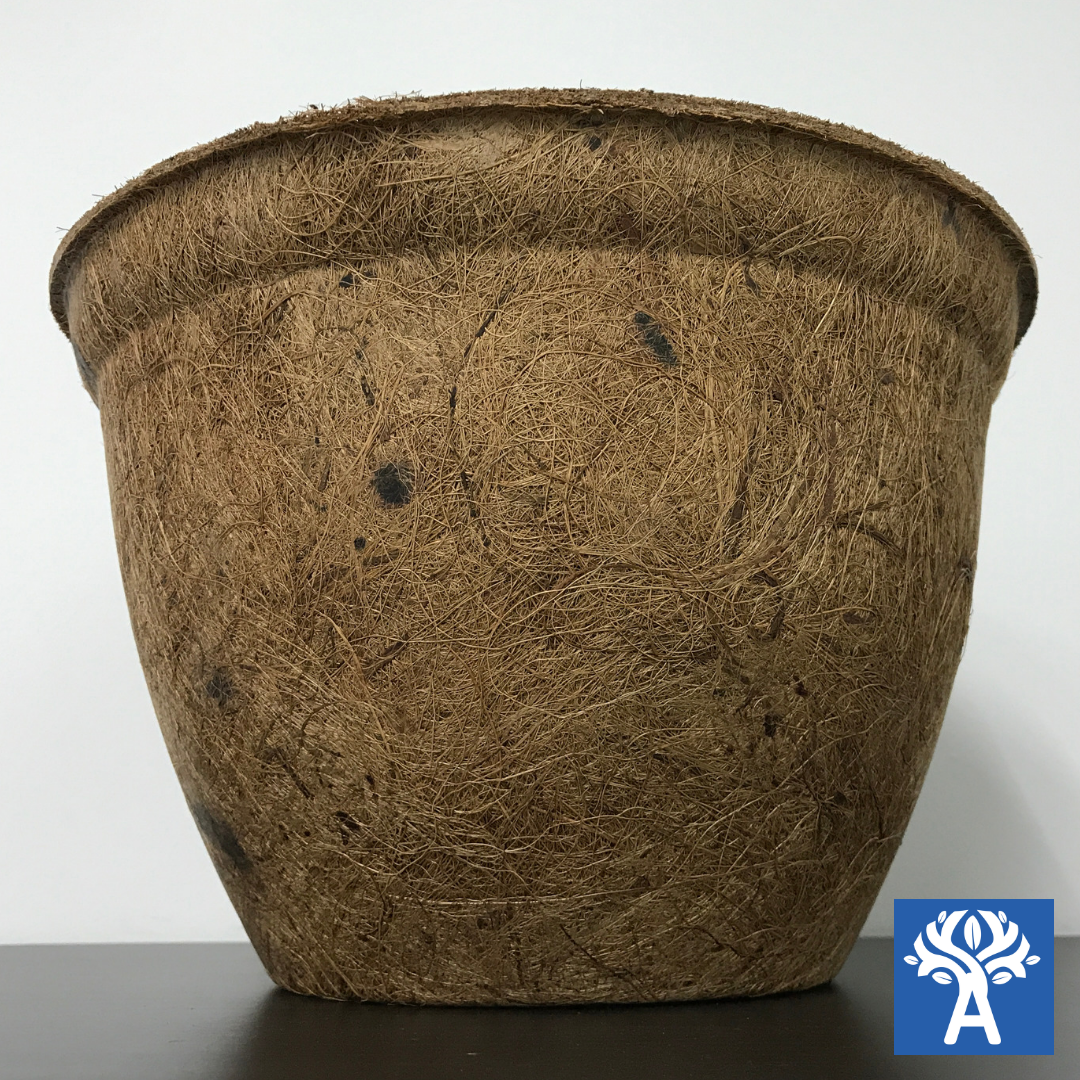 Biodegradable Round Coir Pot (Majestic, Height 20cm)