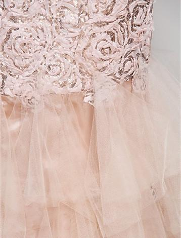 Lace and Tulle Evening/Prom Dress