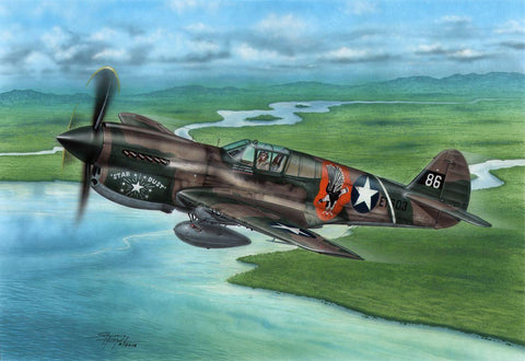 Special Hobby Aircraft 1/72 P40E Warhawk Claws and Teeth Fighter Kit