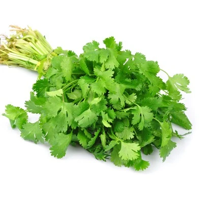 Organic Produce - Coriander (40-50g) - Everyday Vegan Grocer