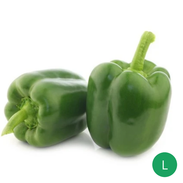 Organic Produce - Green Capsicum Large (200-250g) - Everyday Vegan Grocer