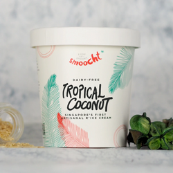 Smoocht R'ice cream - Pint of Tropical Coconut