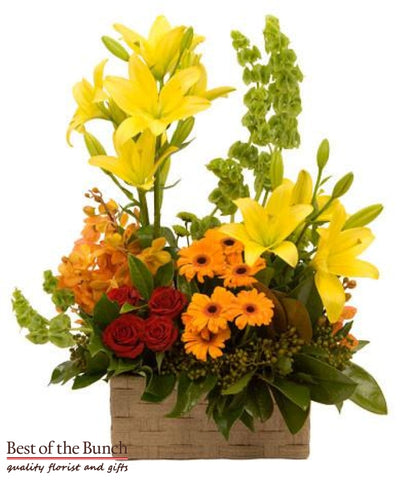 Flower Arrangement Floral Splendour - Best of the Bunch Florist Wellington