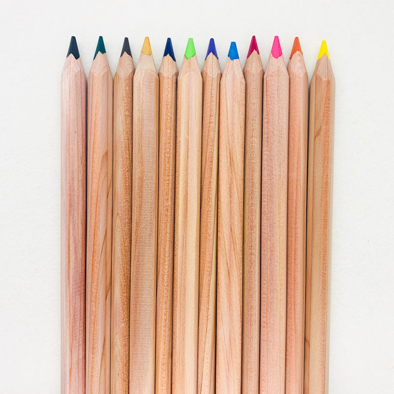 Yorik  COLOURED PENCIL Sets