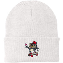 Load image into Gallery viewer, Polaroid Knit Cap