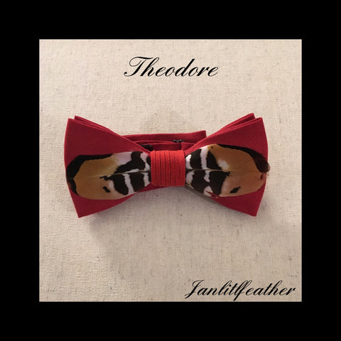 Theodore Red Micro-Suede Feather Bow tie