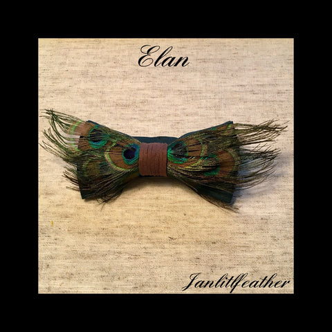 Ethan Natural Peacock Feather Bow Tie