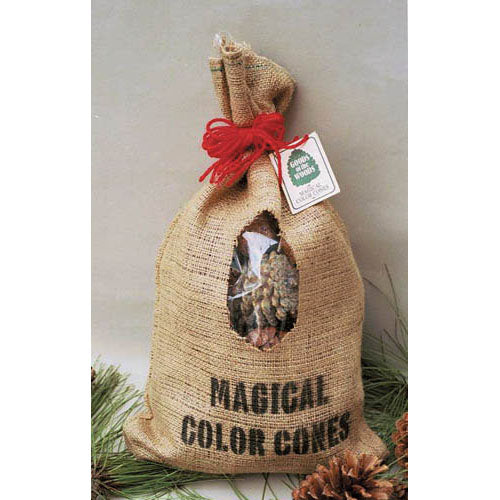 Color Cones in Burlap Bag