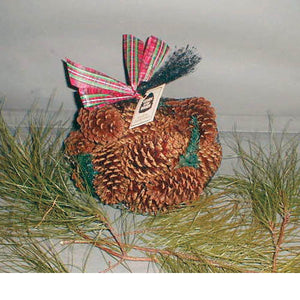 Pine Scented Cones in Bag
