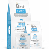 BRIT CARE JUNIOR LARGE GRAIN FREE- losos & krompir