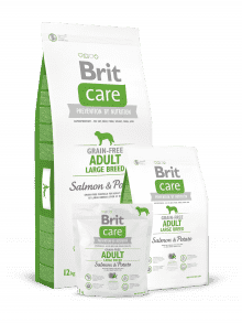 BRIT CARE ADULT LARGE GRAIN FREE- losos & krompir