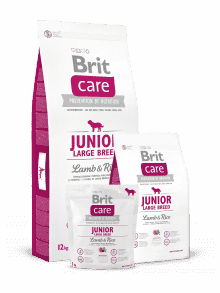 BRIT CARE JUNIOR LARGE BREED-jagnjetina&riž