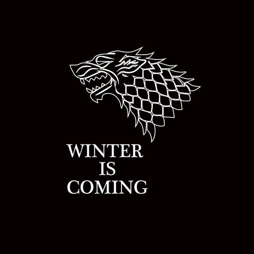 2203-winter-is-coming-women-half-t-shirt