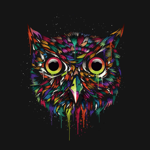 5840-owl-women-half-t-shirt