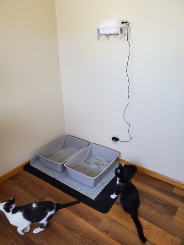 Litter boxes, cats, purrified air filter mounted on wall