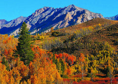 Autumn Serenity Boulder Mountains