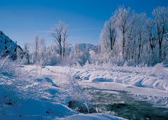 Wood River Frost