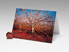 APPLE ORCHARD MAGNET CARD