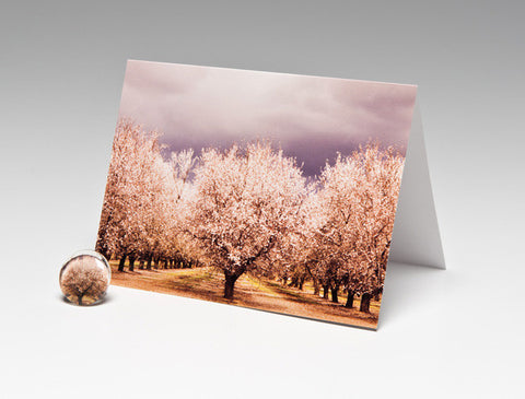 ALMOND ORCHARD MAGNET CARD