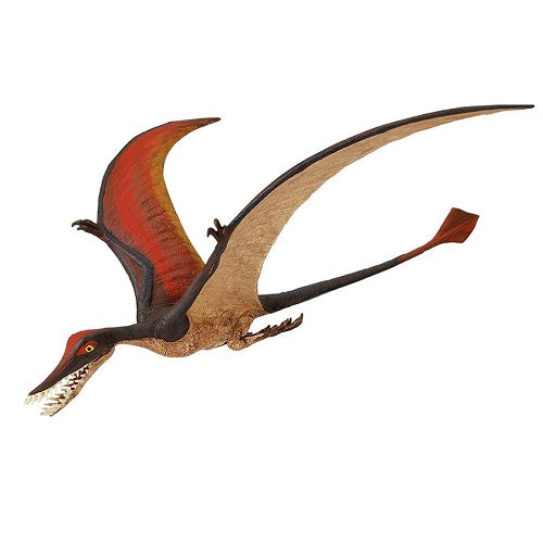 Safari Ltd Wild Safari Prehistoric World Rhamphorhynchus