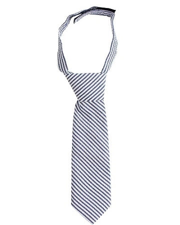 juDanzy Navy and White Seersucker Neck Tie