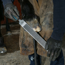"Load image into Gallery viewer, 14"" Save Edge Horse Hoof Rasp 