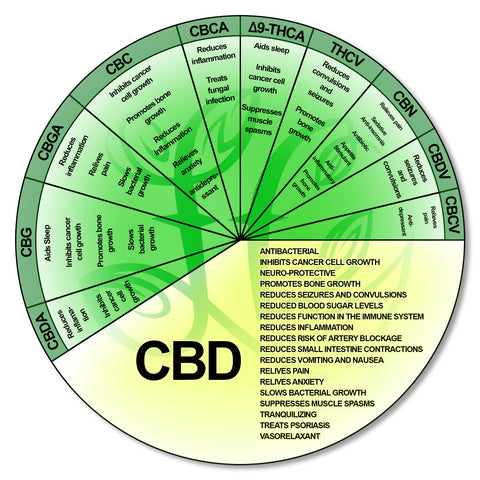 Benefits of Full Spectrum CBD