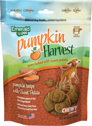 Pumpkin Harvest Chewy Dog Treats - iPupnStuff.com