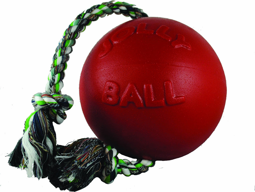 Romp-n-roll Ball Dog Toy - iPupnStuff.com