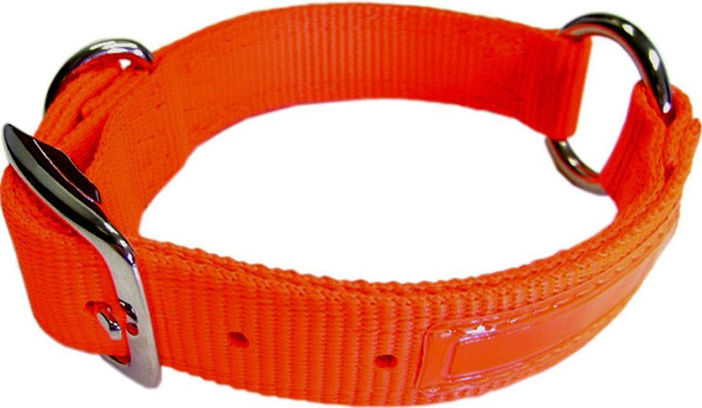Safe-rite Dog Collar With Tape 1x24 In - iPupnStuff.com