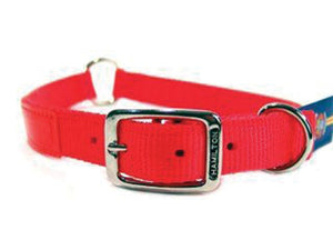 Safe-rite Dog Collar With Tape 1x28 In - iPupnStuff.com