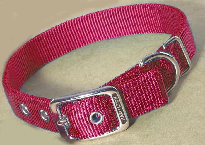 Double Thick Nylon Dog Collar