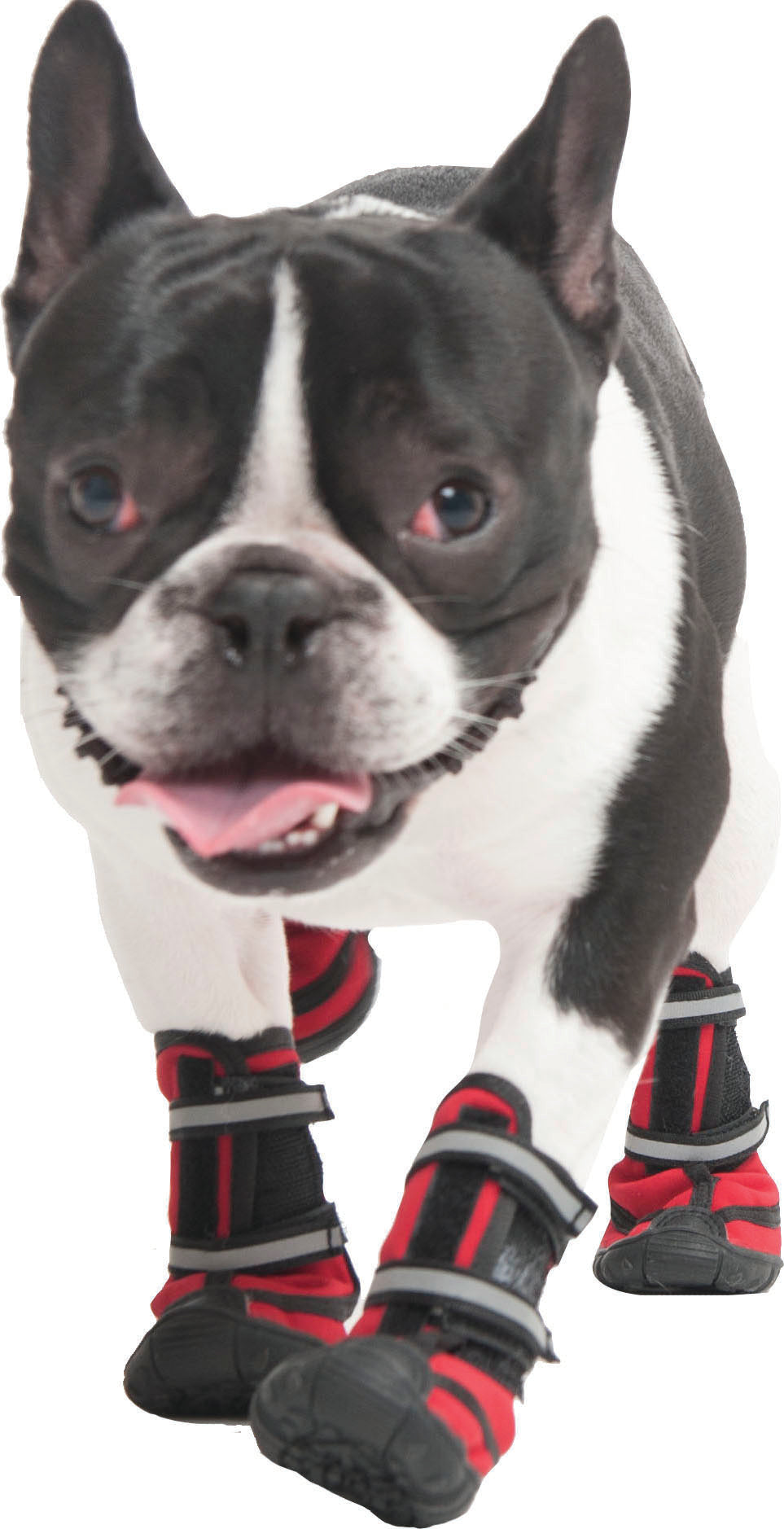 Performance Dog Boot Large
