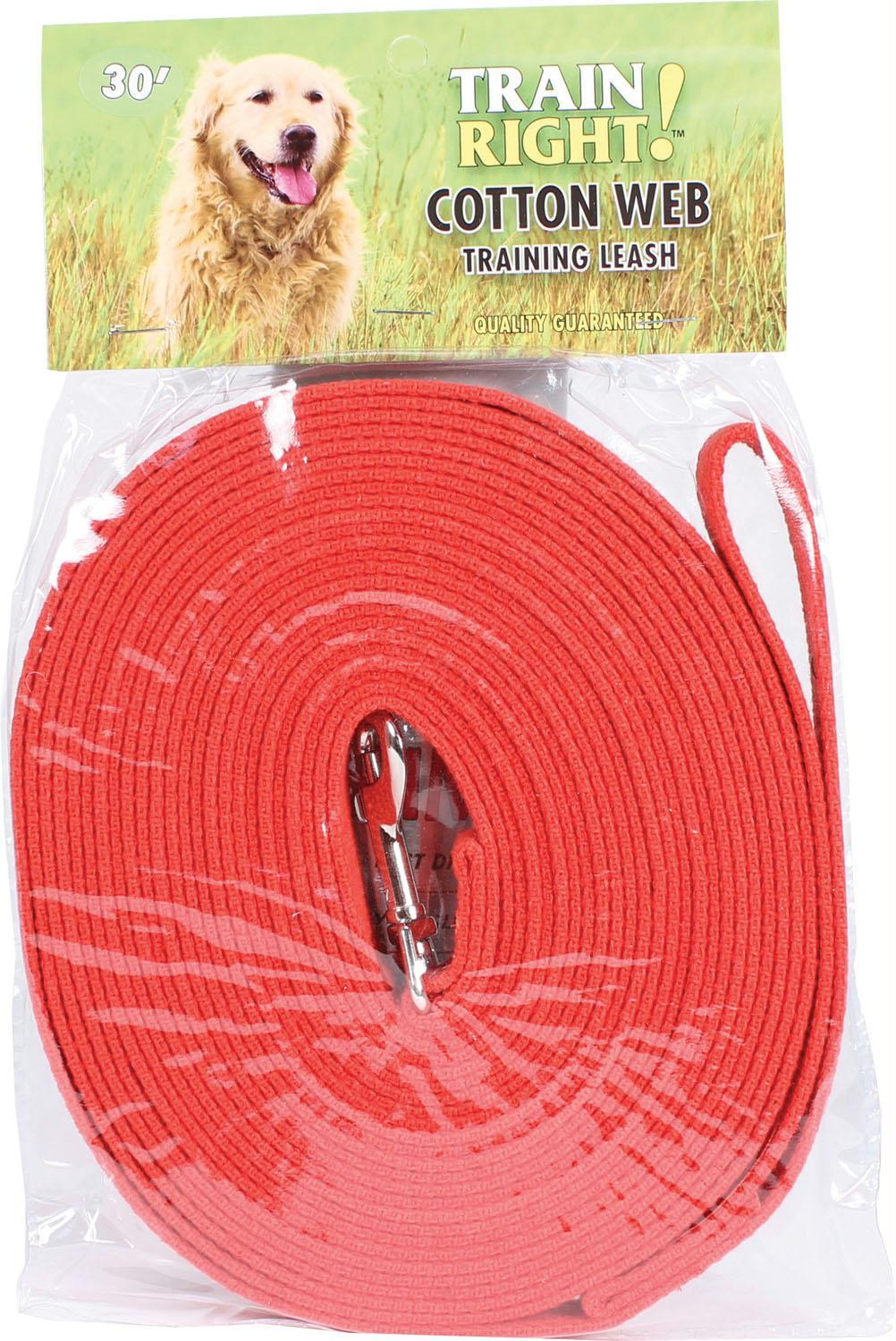 Train Right! Cotton Web Dog Training Leash - iPupnStuff.com