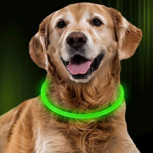 Led glow dog collar - iPupnStuff.com