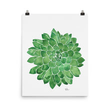 Load image into Gallery viewer, Succulent - Art Print