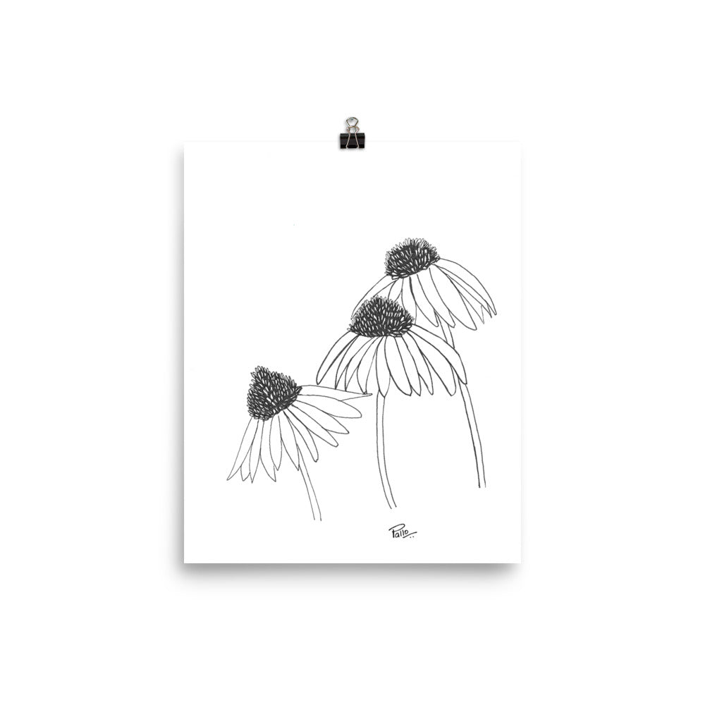 Coneflower in pen - Art Print