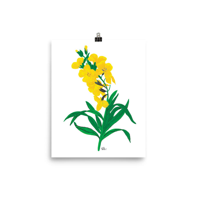 Wallflower - Art Print