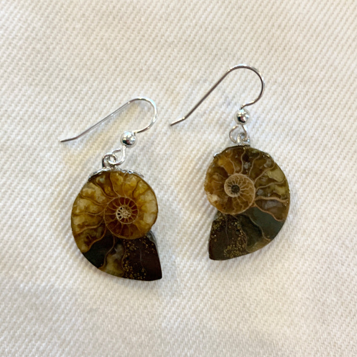 Crystal Creek Gems: Ammonite Earrings
