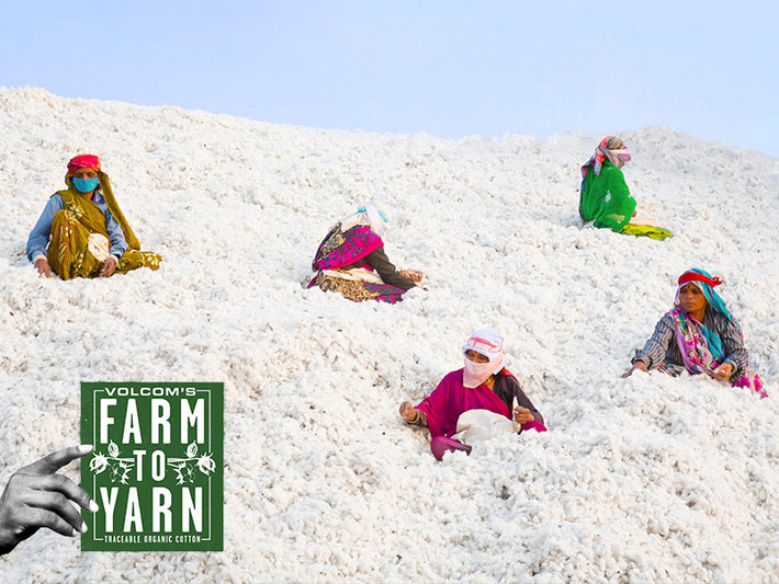 Farm to Yarn Cotton