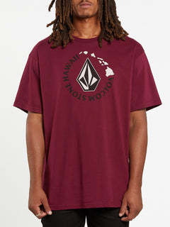 Series Short Sleeve Tee - Maroon (A35419H4_MAR) [F]
