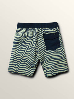 Big Boys Mag Vibes Elastic Boardshorts In Mist Green, Back View