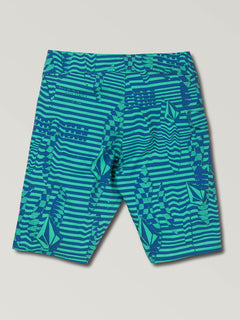 Big Boys Logo Shifter Mod Boardshorts In Wintergreen, Back View