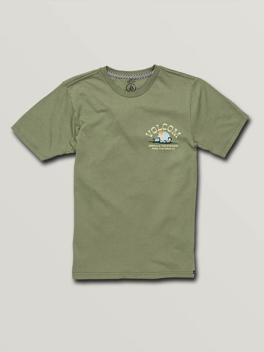Big Boys Natural Fun Short Sleeve Tee In Dusty Green, Front View